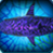 受诅咒鲨鱼